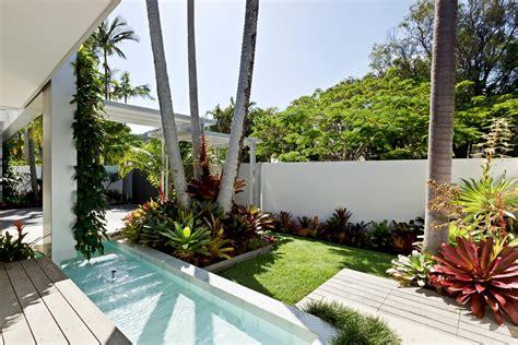 Glamorous Robellini Palm method Other Metro Tropical Pool