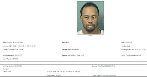 Palm County Sheriff Arrest Records Search Tiger Woods Arrested On Dui Charges In Florida See His Mugshot 183 Sporting News