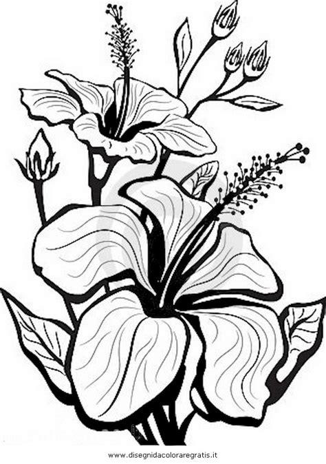 fiori disegni a matita disegni con matita colorare imagixs ajilbabcom portal