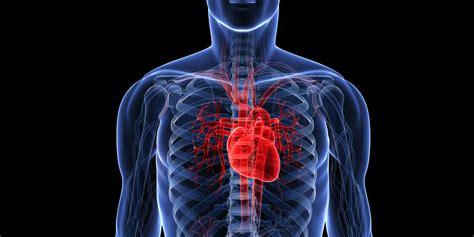 the cardiac killer video scam cardiovascular disease remains europe s biggest killer