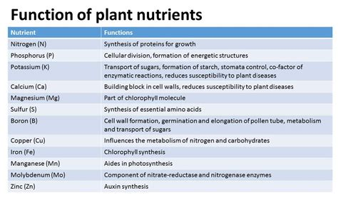 6 proteins and their functions start from 10 per month 6 nutrients and their functions