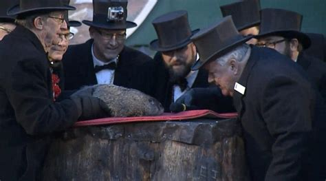 groundhog day no shadow meaning groundhog day predicts early end of winter as punxsutawney