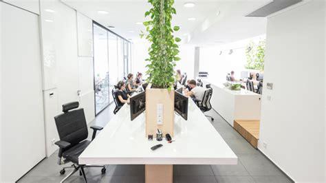 interior design indoor plants modern office interior with indoor plants
