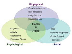 biopsychosocial assessment template out of darkness