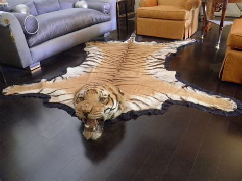 taxidermy rug antique registered taxidermy tiger rug prior to endangered classification at 1stdibs