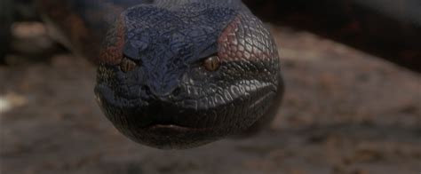 film anaconda review anaconda uk bd dvdactive