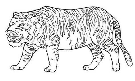 imagenes animales salvajes para imprimir dibujos para colorear e imprimir animales salvajes imagui