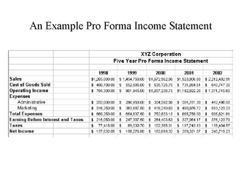 pro forma financial statement template an exle pro forma income statement