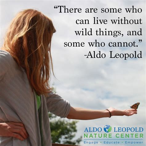 images  aldo leopold quotes  inspiration  pinterest   god  thoughts