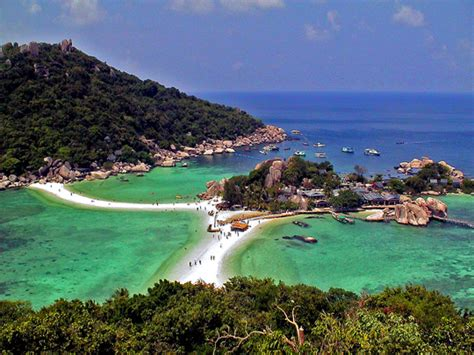 koh tao dive center dive center for sale dive centre on koh tao