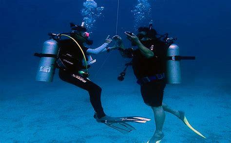 padi dive courses padi open water diver course tenggol coral resort