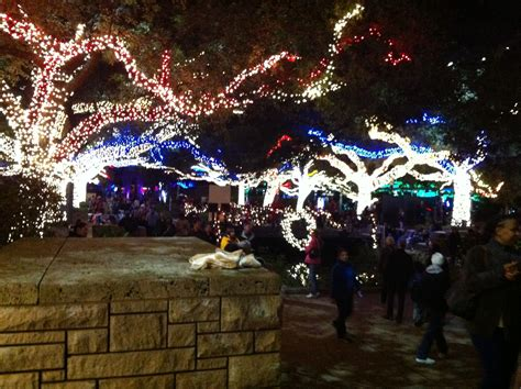 Hewan Lucu 2016 When Does Zoo Lights End Images When Does Zoo Lights End