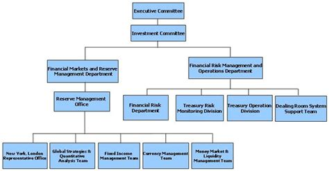 risk management investment bank investment banking management structure investment