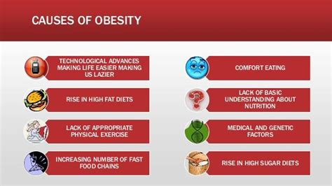 10 Causes Of Obesity causes of obesity pictures www pixshark images