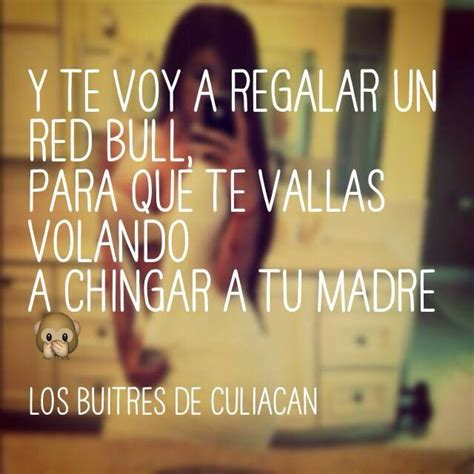 imagenes corridos vip corridos vip corridos 161 pinterest humor and frases