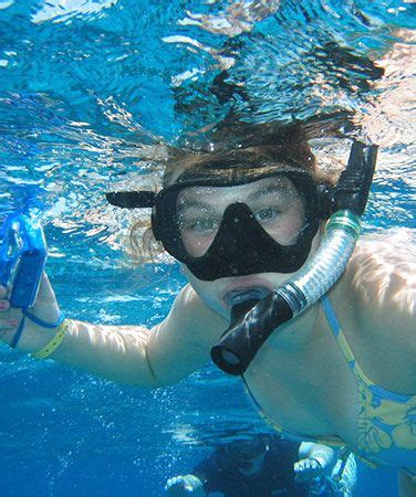 catamaran snorkeling montego bay jamaica quality diving snorkeling with dressel divers