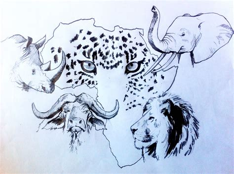 Big 5 Sketches by Pin By Debbie Visagie On Big 5 Pyrography