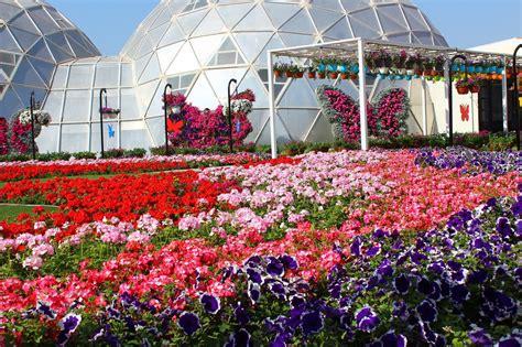butterfly garden dubai world flowers