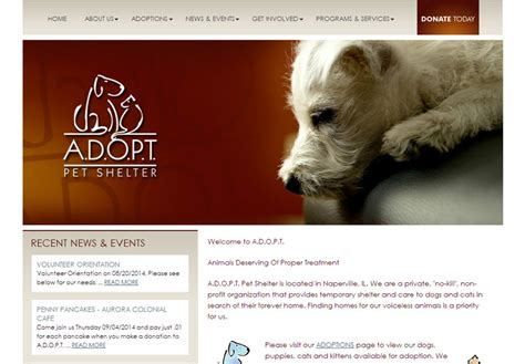 animal shelter web design weblinx