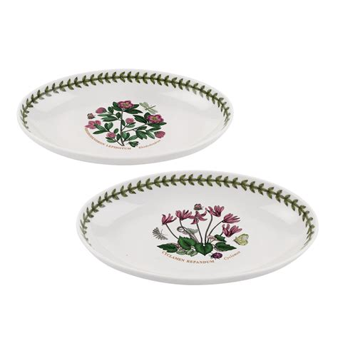 Botanic Garden Dishes Portmeirion Portmeirion Botanic Garden Set Of 2 Oval Dishes