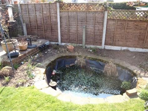 backyard fish pond maintenance pond cleaning pond servicing pond maintenance bristol