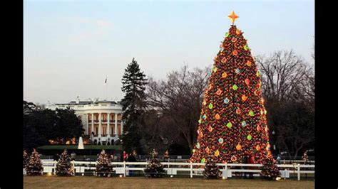 white house christmas tree decorations youtube
