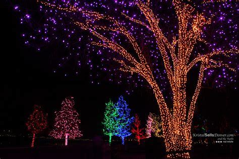 holiday trees at hudson gardens denver photo blog