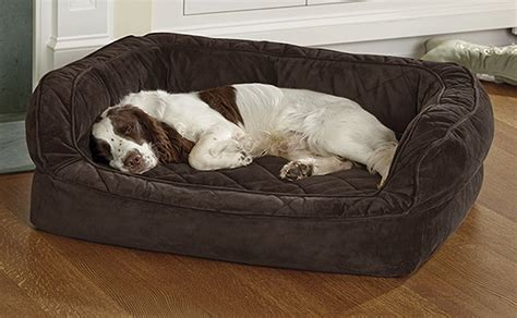 deep dish dog bed deep dish dog bed double bolster horseshoe dog bed with memory dog beds and costumes