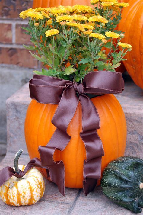 Pumpkin Planter by Pumpkin Planter Aka Quot Mumkin Quot Pink Polka Dot Creations