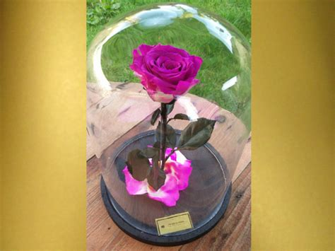 Bloom Box Pink Preserved Flower For Gift theluxflowers luxory gift flower dessert sending service and webshop
