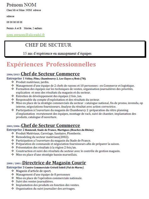 Preparer Cv by Preparer Un Cv Exemple Cv Word Gratuit Jaoloron