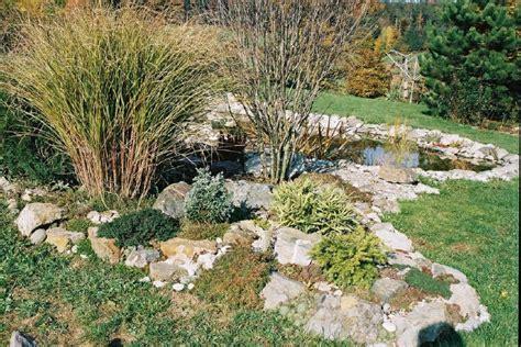 Cactus Rock Garden Rock Cactus Garden Cacti Air Plants Pinterest