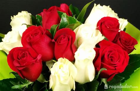 imagenes de flores rojas y blancas imagenes de flores rojas y blancas para fondo de pantalla