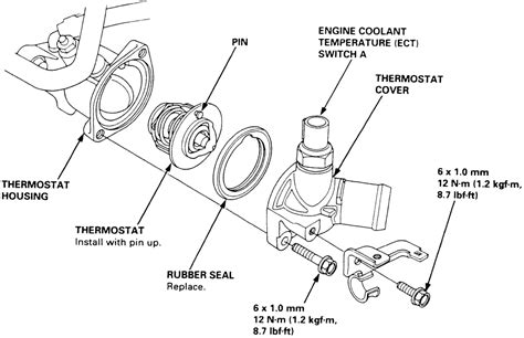 toyota celica thermostat location toyota get free image