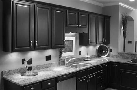 Carolina Kitchen Cabinets by Kitchen With White Cabinets And Black Appliances Home