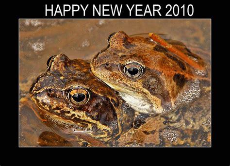happy new year 2010 happy new year 2010 by maresolo on deviantart