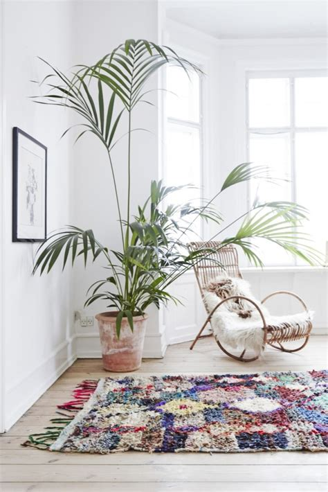 7 stylish ways to use indoor plants in your home s d 233 cor 7 different way to indoor plants decoration ideas in