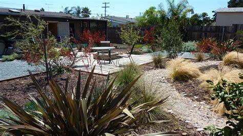san diego drought tolerant garden erin lau design
