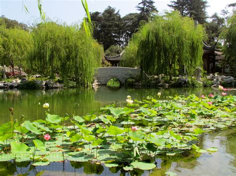 Huntington Library And Gardens by Garden The Huntington Library And Garden By