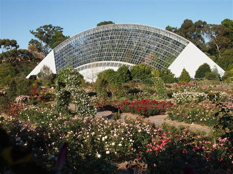 Adelaide Botanic Gardens Adelaide Botanic Garden