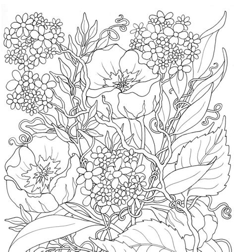 adult coloring page summer flowers 3