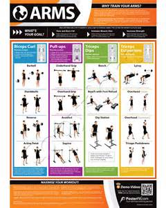 Dumbell workout chart arm workouts posterfit