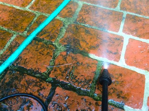 how to ged rid of mold mildew or moss
