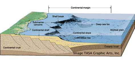 Continental Shelf Slope And Rise by Oceanic Zones Devonian Seas Alamo Impact Project