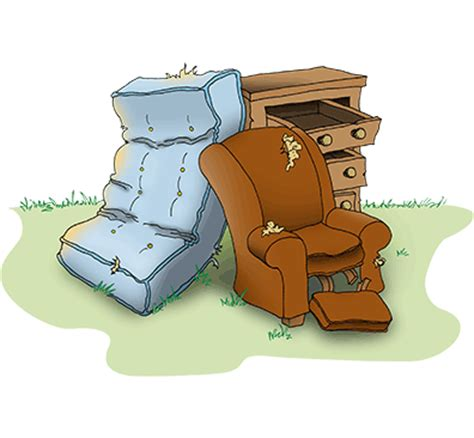 Throw Away Furniture by Throwing Away Bed Bug Infested Furniture Is An Option