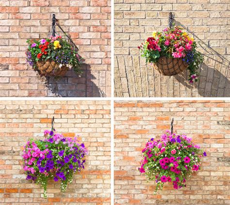 Hanging Flower Planter by 70 Hanging Flower Planter Ideas Photos And Top 10