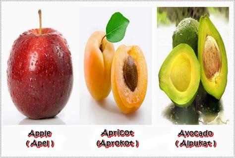Minyak Zaitun Dan Gambarnya nama buah buahan dalam bahasa inggris beserta gambar dan artinya
