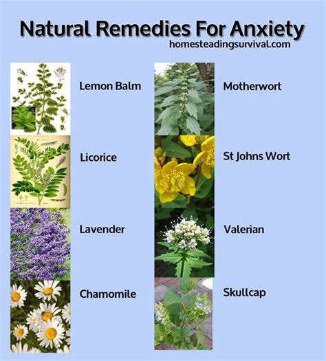 remedies for anxiety health benefits
