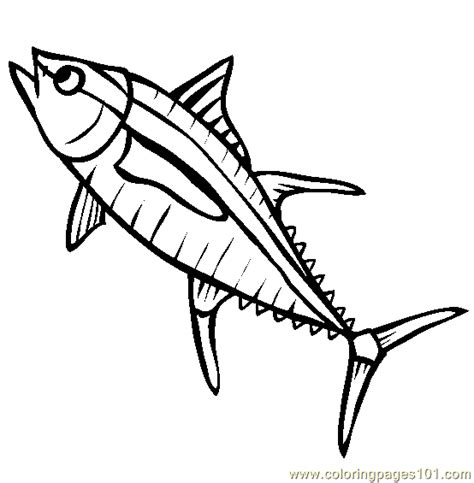 shark fin coloring page free shark fin coloring pages sketch coloring page