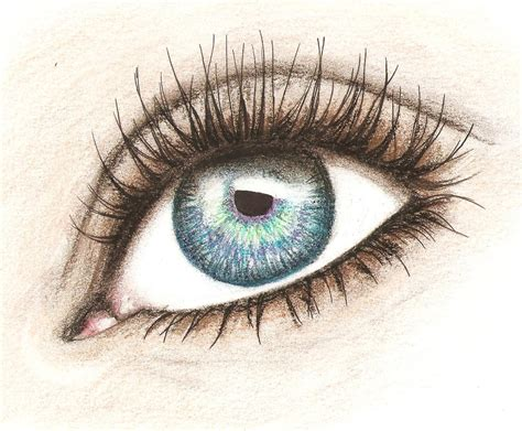 A Drawing Of An Eye by Pin Tags Drawing Faces Pencil Realistic On